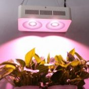 Newest High Power Full Spectrum Led Grow Lights 400W COB reflector for Hydroponic Grow Box Medical plant commercial cultivation