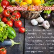 1000+7 kinds Vegetable Seeds include cucumber seeds and tomato NO GMO vegetable for home garden