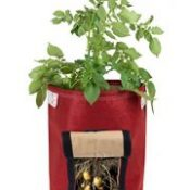 BloemBagz Potato Vegetable Planter Grow Bag, 9 Gallon, Union Red (POP-12)